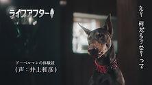 01_LA_shurai-final_On-telop.jpg