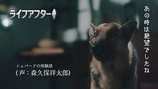 03_LA_kisekae-final_On-telop.jpg