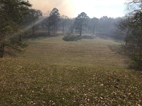 smoke at HS.JPG