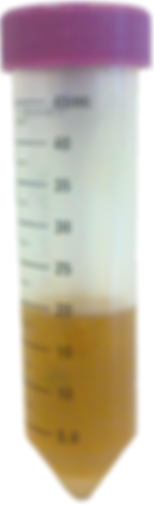 Sophorolipids sample