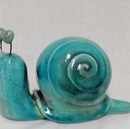 Escargot turquoise