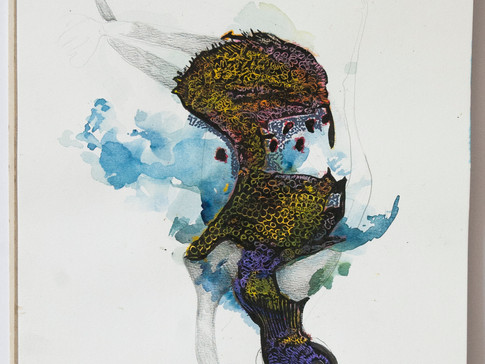 tecnica mixta acuarella, tinta, crayon sobre papel 25cm por 35cm 2016