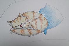 13 MIN CAT FINISHED.jpg