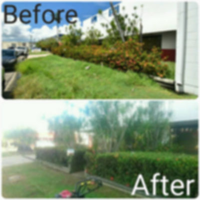 lawn mowing services townsville