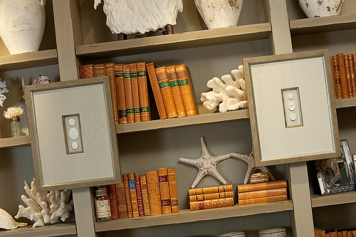 Orgnaized Bookcase Picture.jpg