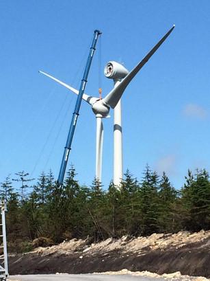 renewable energy.jpeg