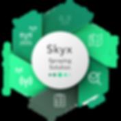 אינפוגרפיקה - SKYX 3.png