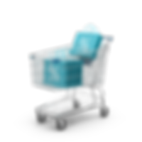 Shopping Cart and Sale Bags.H03.2k.png