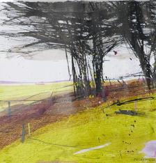 Hawthorns, acrylic on paper 40x40cms framed £450