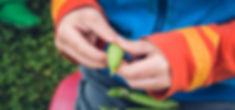 adult-beans-blur-168287.jpg