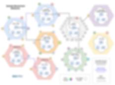 EOS PRO TOKENOMICS-SAMPLE NETWORKS (5).p