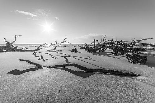 Hunting Island Sunrise In Black And White - 11x14 Print - Free Shipping