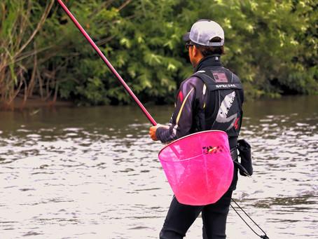 加美町鳴瀬川の鮎釣り解禁しました!