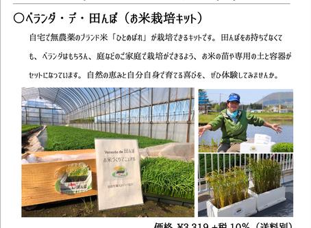 【売り切れ間近】ご当地セレクト「ベランダ・デ・田んぼ(お米栽培キット)」残りわずかです!