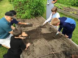 planting radishes2.jpg