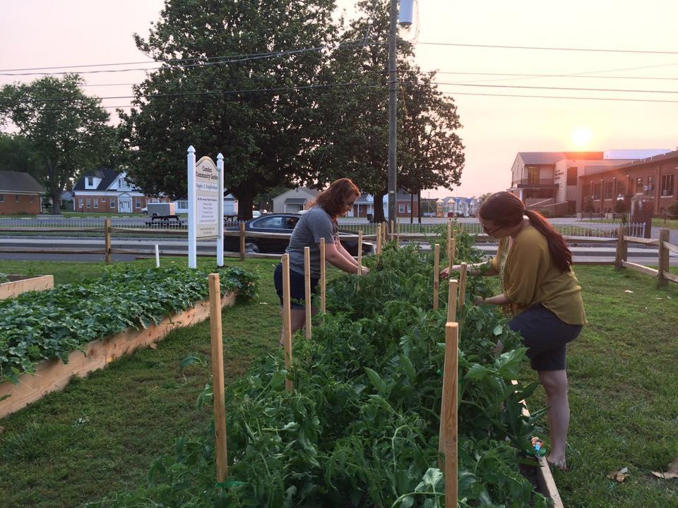 6/10 Garden helpers