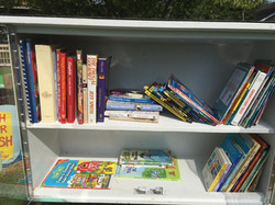 Little free library a hit!