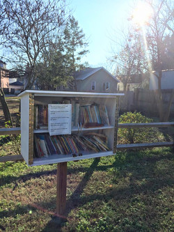 Little Free Library filled