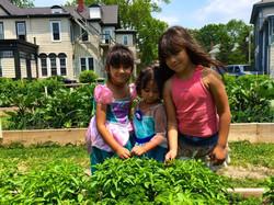 Community kids at the garden