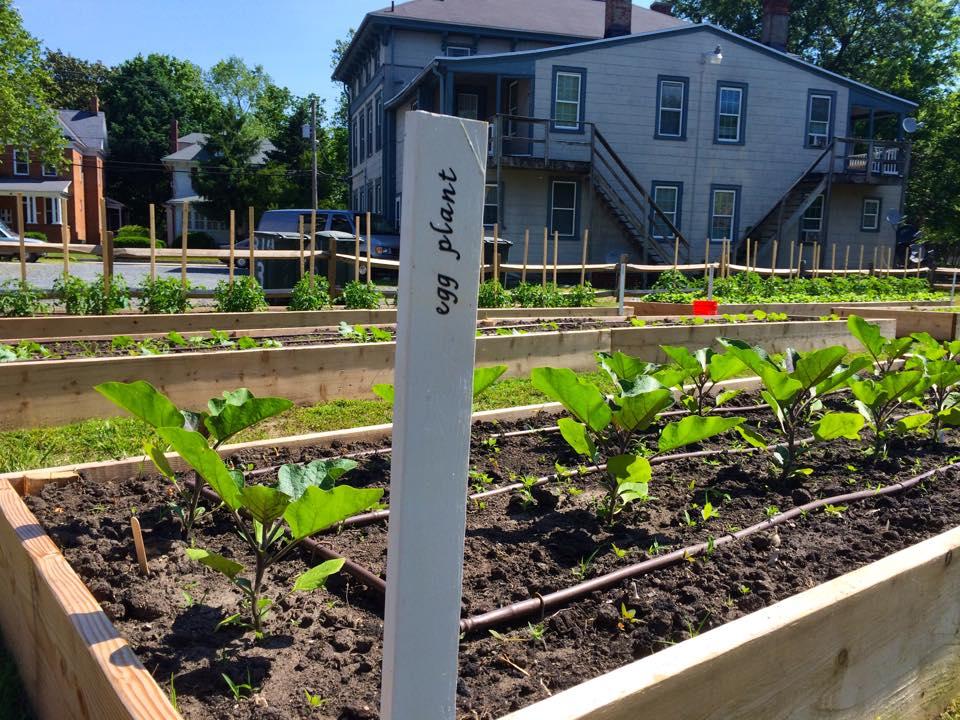 New garden signs