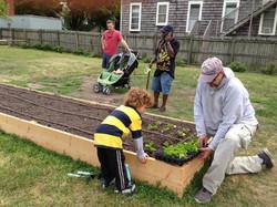 Planting together