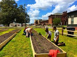 Community planting