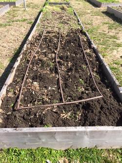 Turning soil beginnings.jpg