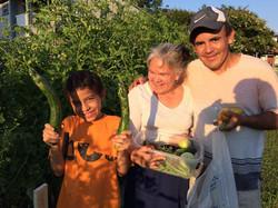 Garden neighbors July 21, 2015