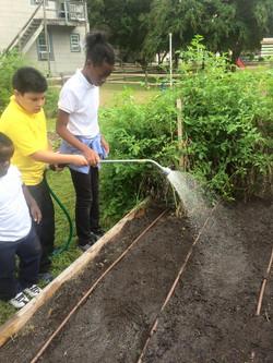 watering new seeds.jpg