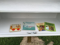 Little Free Library July 17, 2015