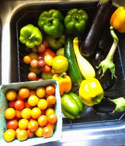 Veggies for Pinehurst Display