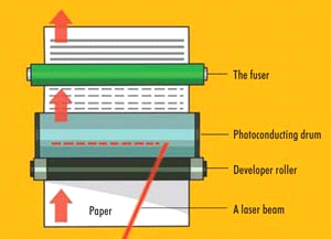 It's no secretToner Cartridge Parts Printers without one-piece cartridges  frequently divide the cartridge's functions as two assemblies -a Developer Unit with the toner supply, and a Scavenger Unit, which carries the Organic Photoconductor (OPC) and gathers and stores the waste accounting for a rising share of the market, or can be, done to each of these parts as So toner. Refilled toners are once more we'll take some time to discuss what is, prepared for reassembly. that most image problems are caused by cartridges, either new or refilled, and that many customers have learned to try changing the cartridge before calling the technician. With that in mind, the number of machine failures caused by image problems may equal those caused by jams.