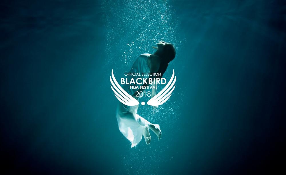The Book of Judith at Blackbird Film Festival