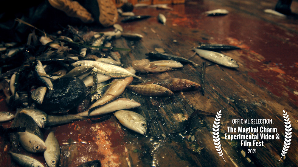 Displaced at 9th The Magikal Charm Experimental Video & Film Festival