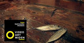 Displaced at Video Art Festival Miden in Greece