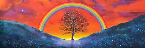 Tree of hope (Sycamore Gap)