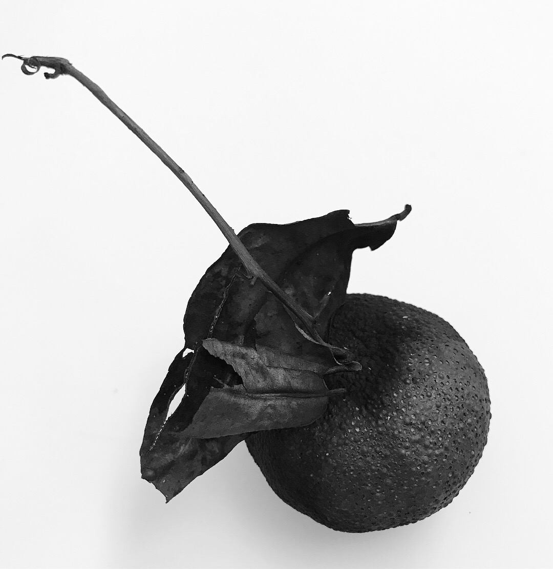 Elle Ford carbonised object 1