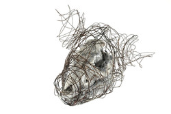 Wire Skull By Elle Ford