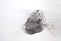 Wire By Elle Ford (2)
