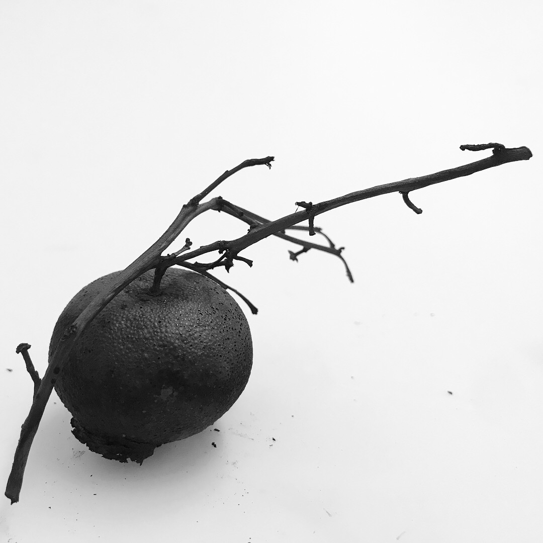 Elle Ford carbonised object 2