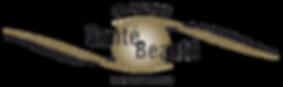 LogoCSB_couleurs_2020-Aok.png