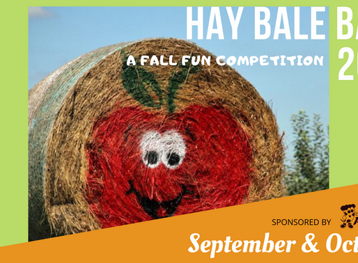 Hay Bale Voting Begins!