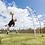 Thumbnail: Quickster Training Goal