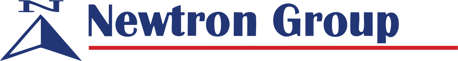 NEWTRON GROUP LOGO.png