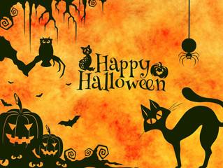 Spooky stories on Halloween night