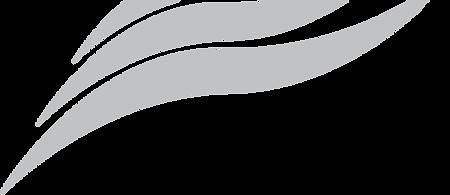 Addis Logo GREY.png