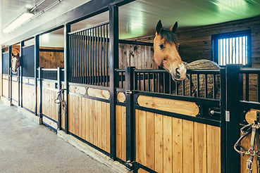 category-display-horse-stall-fronts.jpg