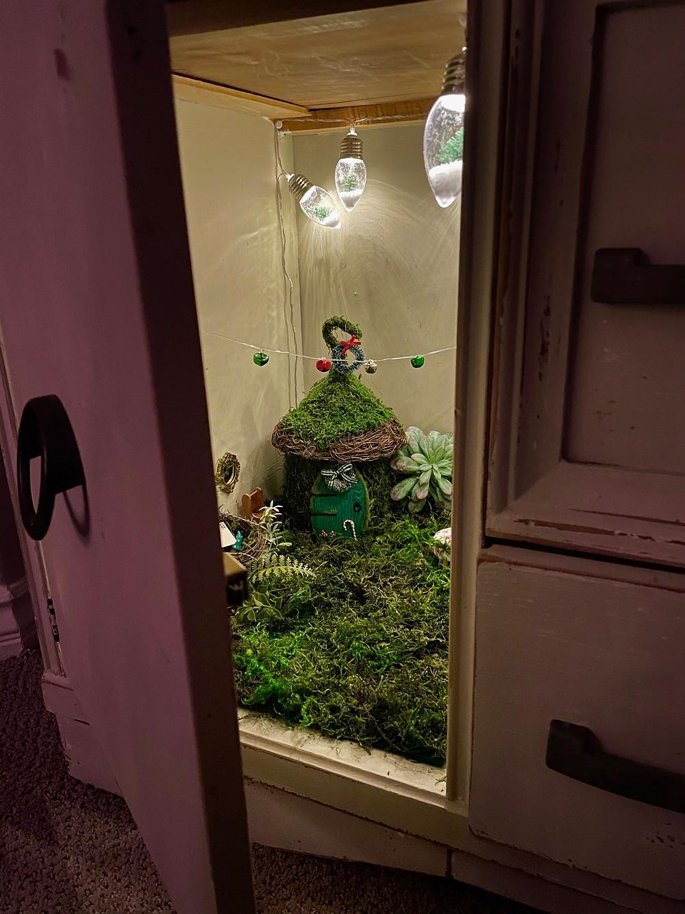 Indoor cupboard Christmas Fairy garden