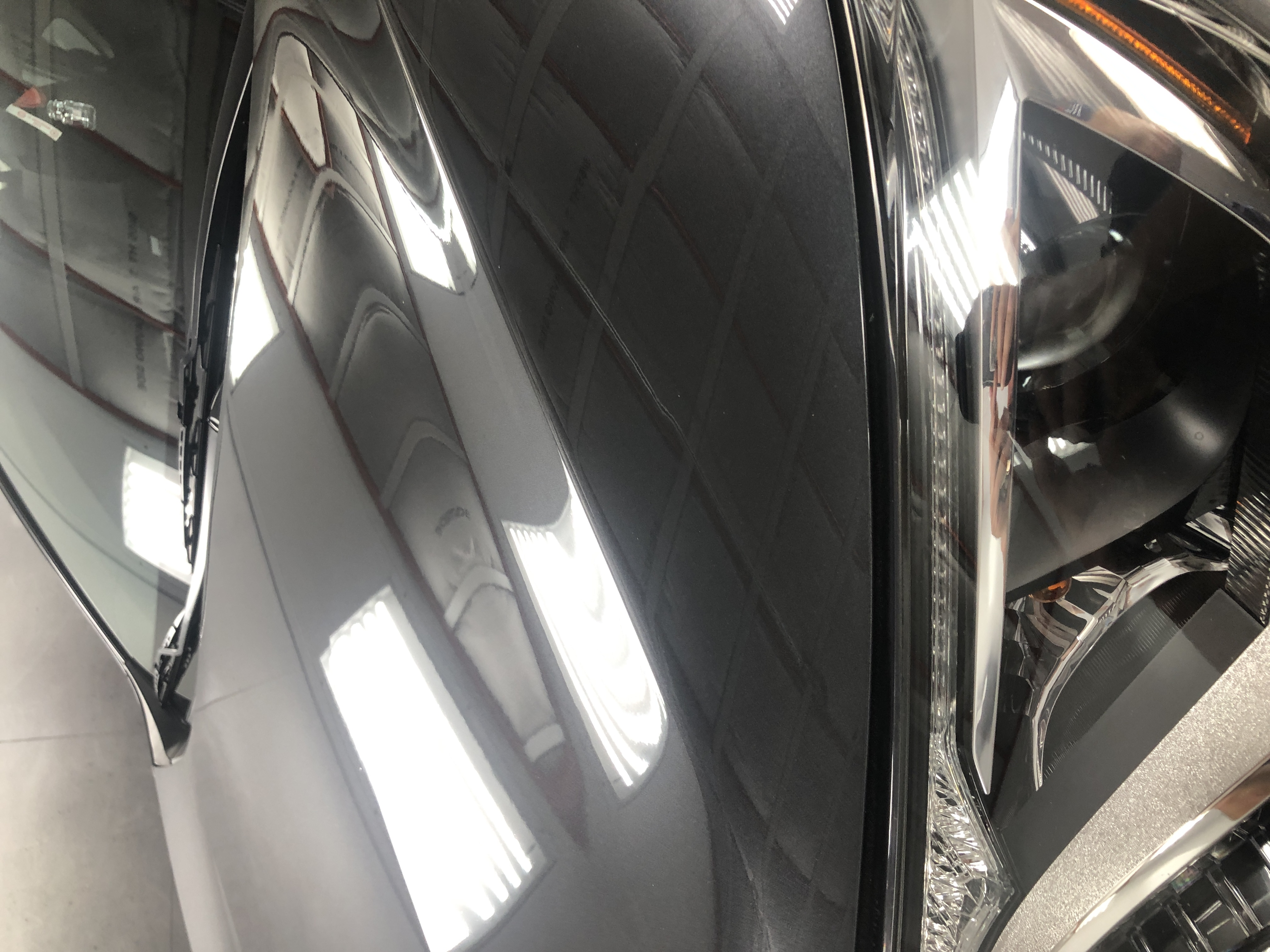 Vivid Car Detailing- hood