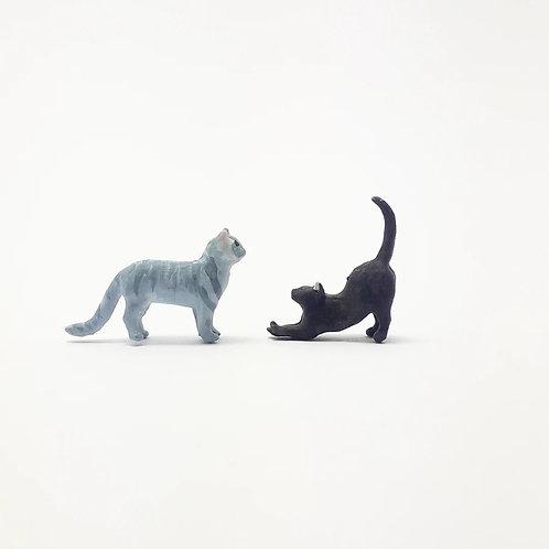 Gatos (unidade)